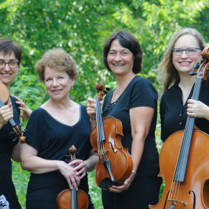 Camerata String Quartet - Wedding Band / Wedding Entertainment in Madison, Wisconsin