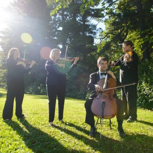 Campion String Quartet - Classical Ensemble / Holiday Party Entertainment in Rochester, Minnesota