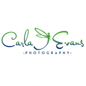 Carla J Evans Photography - Photographer / Photo Booths in Toronto, Ontario