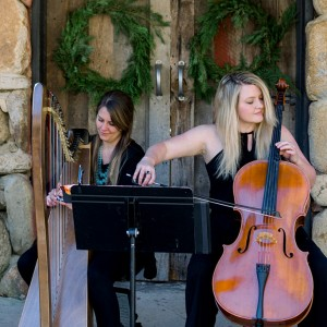 Carolina Music Planner - Classical Ensemble / Classical Duo in Asheville, North Carolina