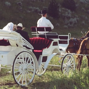 Casanova Carriage - Horse Drawn Carriage / Holiday Party Entertainment in Big Sky, Montana