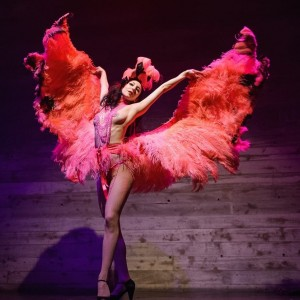 Cassandra Rosebeetle - Burlesque Entertainment / Interactive Performer in New York City, New York