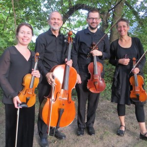 Cavatina String Quartet - String Quartet / Wedding Musicians in Minneapolis, Minnesota