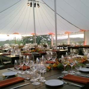Celebrations Party Rentals and Tents