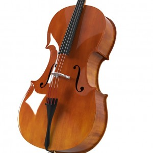 Cello soloist - Cellist / Composer in Dubuque, Iowa