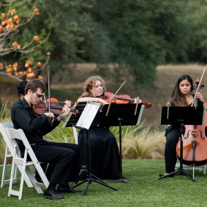 Cello Vida - Cellist / String Quartet in San Antonio, Texas