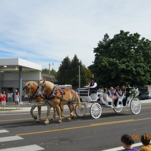 Chafin Farm Carriages - Horse Drawn Carriage / Wedding Services in Sweet Home, Oregon