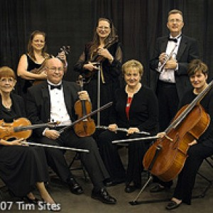 Chamber Music Unlimited/Bands and More - String Quartet / Harpist in Houston, Texas