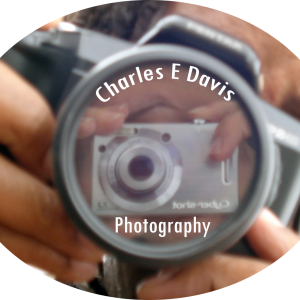 Charles E Davis Photography - Photographer / Portrait Photographer in Oakland, California