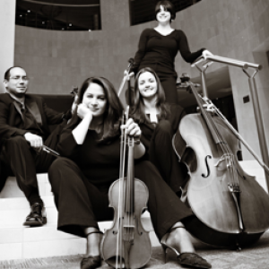 Charlotte Strings for Events - Classical Ensemble / String Quartet in Charlotte, North Carolina