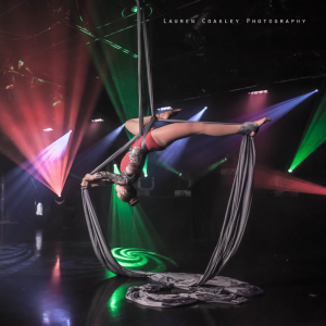 Chattanooga Aerials - Aerialist / Dancer in Chattanooga, Tennessee