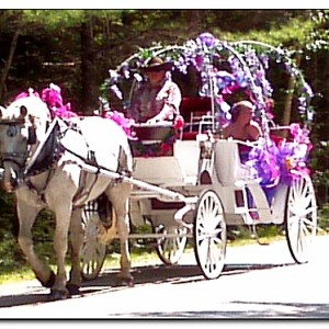 CHF Carriage Company - Horse Drawn Carriage in Casco, Maine