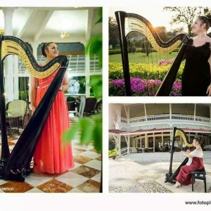 Chiara Capobianco harpist for events - Harpist / Tea Party in San Diego, California