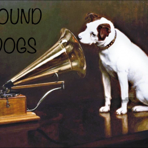 Sound Dogs - Acoustic Band in Sandy Hook, Connecticut