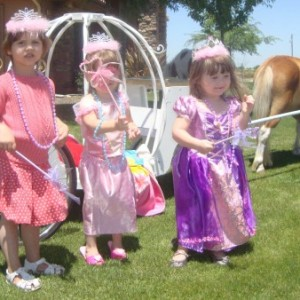 Cinderella Carriage Rides My Little Princess Parties All CA Cities - Horse Drawn Carriage / Children's Party Entertainment in Sanger, California