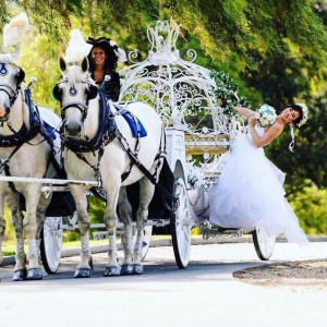 Cindy Cinderella Carriages - Horse Drawn Carriage / Princess Party in Riverside, California