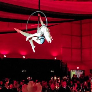 Cirque Wonderland - Circus Entertainment / Aerialist in Des Moines, Iowa