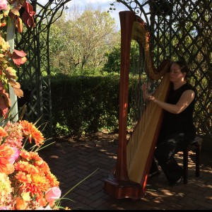 City Winds Flute and Harp  Duo - Harpist / Strolling Violinist in Lincoln Park, New Jersey