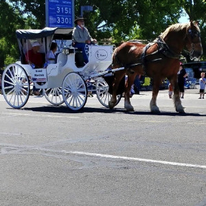 CL Ranch - Horse Drawn Carriage / Limo Service Company in Grantsville, Utah