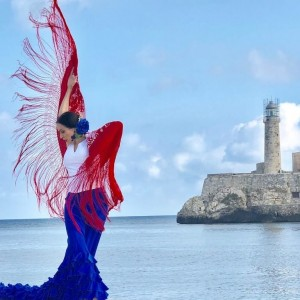 Clarita Filgueiras - Flamenco Puro - Flamenco Dancer in Coral Gables, Florida