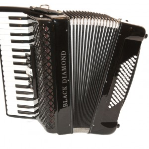Classical musician - Accordion Player in New York City, New York