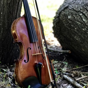 Classical Strings - Violinist in Austin, Texas