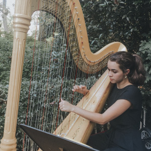 Classically Trained Harpist and Vocalist - Harpist in Roswell, Georgia