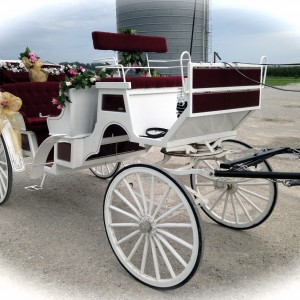 Clip Clop Wagon Rides & Carriage Service - Horse Drawn Carriage in St Olaf, Iowa