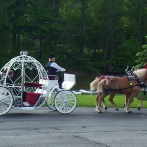 Colonial Acres Carriage Service - Horse Drawn Carriage / Holiday Party Entertainment in Vermilion, Ohio