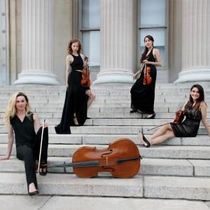 NYC String Quartet - String Quartet / Wedding Entertainment in New York City, New York