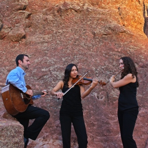 Con Brio Trio - Classical Ensemble / Violinist in Denver, Colorado
