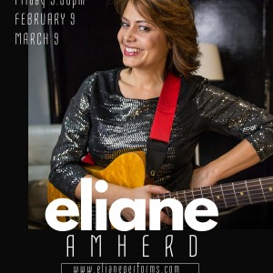Eliane Amherd - Jazzy, Groovy, Brazilian Styles - Singing Guitarist in New York City, New York