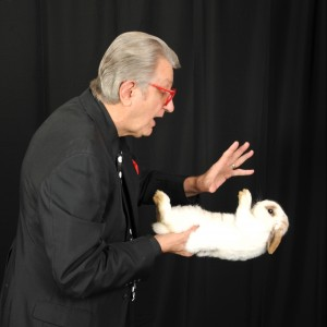 Conley The Magician - Magician / Corporate Magician in Myrtle Beach, South Carolina