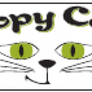 Copy Cat - Cover Band / Party Band in Middletown, Ohio