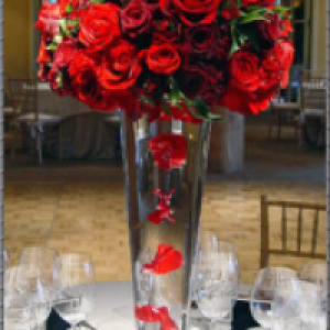 Coral Springs Flowers and Events
