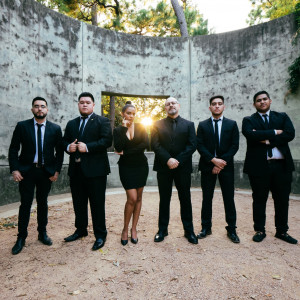 Corporate Seventy7 - Wedding Band / Latin Band in Houston, Texas