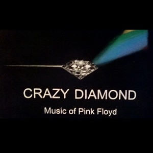 Crazy Diamond - Cover Band / College Entertainment in Springfield, Massachusetts