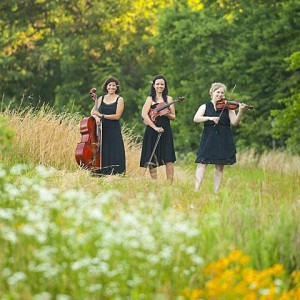 Crescendo Trio - String Trio / String Quartet in Kansas City, Missouri