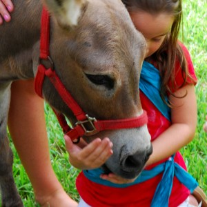 Critter  Caravan - Petting Zoo / Outdoor Party Entertainment in Jacksonville, Florida