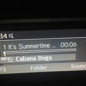 Cabana Dogs - Party Band / Prom Entertainment in Sarasota, Florida