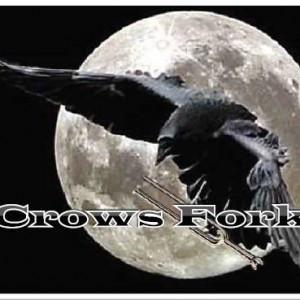 Crows Fork - Party Band / Halloween Party Entertainment in Columbia, Missouri