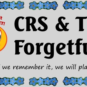 CRS & The Forgetfuls - Dance Band / Party Band in Baton Rouge, Louisiana