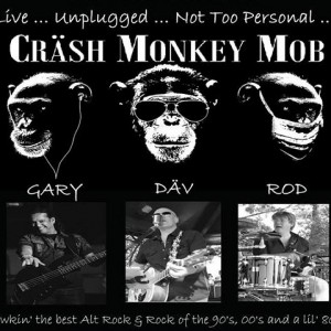 Däv and the Cräsh Monkey Mob - Party Band in Toronto, Ontario