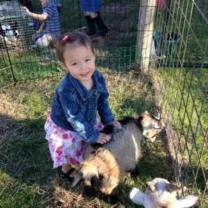 Dalton Family Farm - Petting Zoo / Family Entertainment in Austin, Texas
