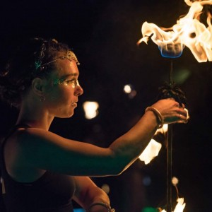 Dandelion fire performance