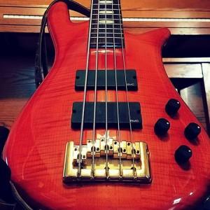 Daniel Espinoza Bass Player - Bassist in Clermont, Florida