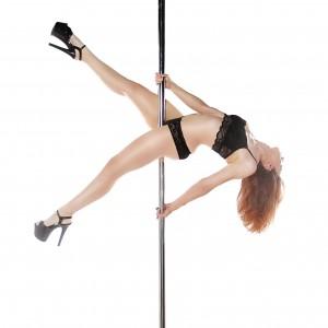 Danielle G Pole Dancer/Aerialist