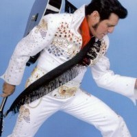 Dave Bowman as Elvis - Elvis Impersonator / 1950s Era Entertainment in Williamsville, Missouri