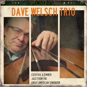 Dave Welsch Trio - Jazz Band / Bossa Nova Band in Syracuse, New York