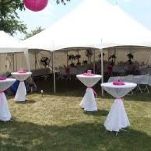 Dayna's Party Rentals and Catering - Tent Rental Company / Linens/Chair Covers in Sewell, New Jersey